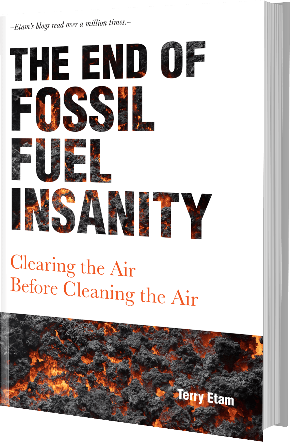 The End of Fossil Fuel Insanity book cover